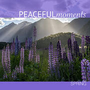 Peaceful Moments: Spring